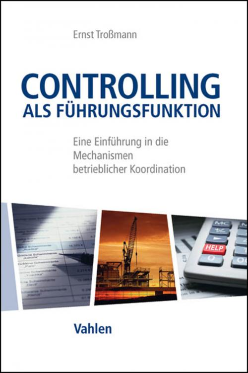 Controlling als Führungsfunktion cover