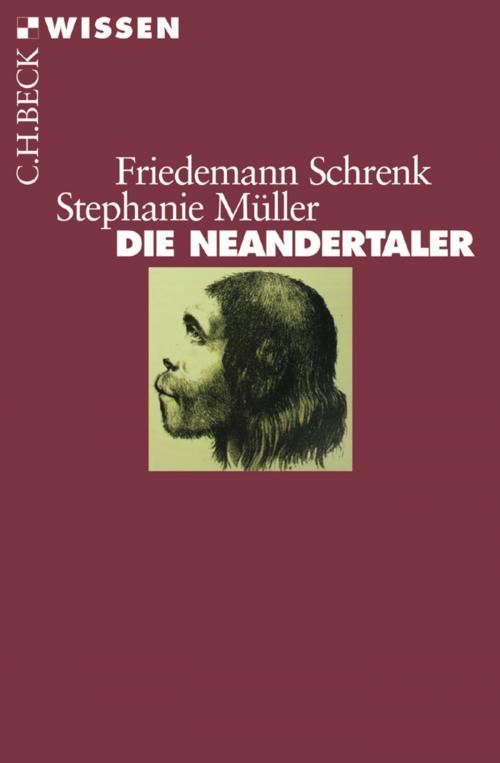 Die Neandertaler cover