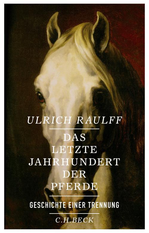 Das letzte Jahrhundert der Pferde cover