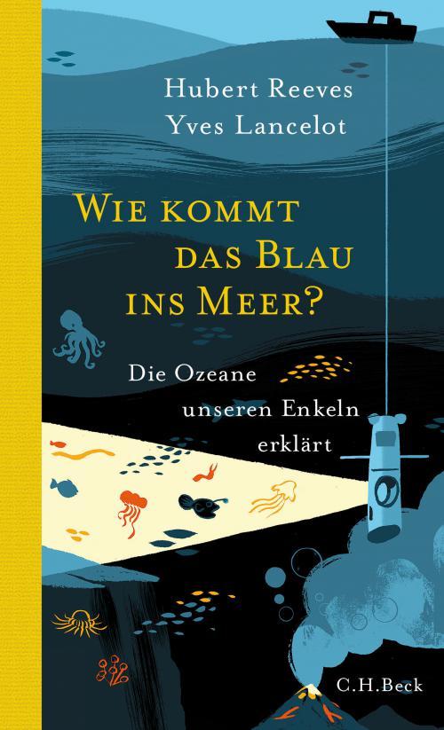 Wie kommt das Blau ins Meer? cover
