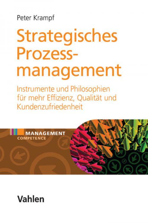 Strategisches Prozessmanagement cover
