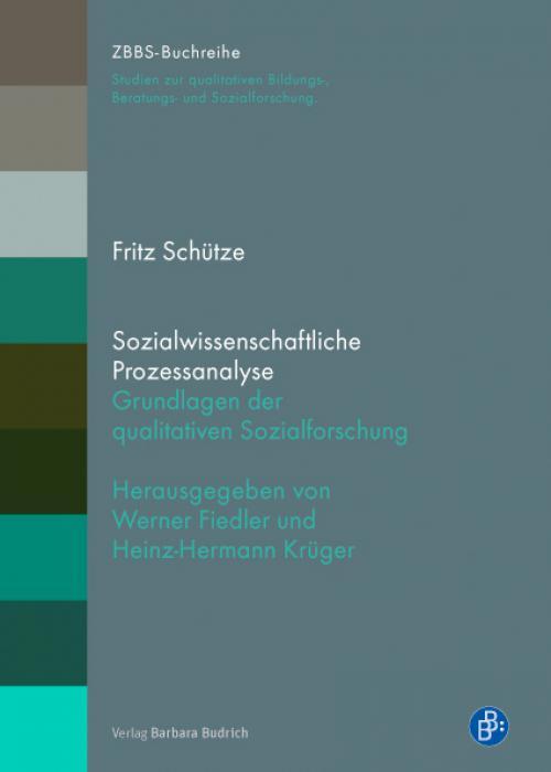 Sozialwissenschaftliche Prozessanalyse cover