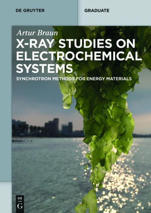 X-ray Studies on Electrochemical Systems cover