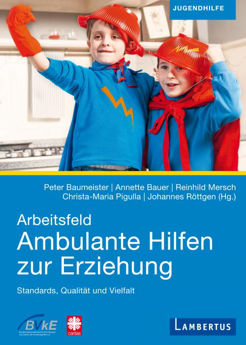Arbeitsfeld Ambulante Hilfen der Erziehung cover