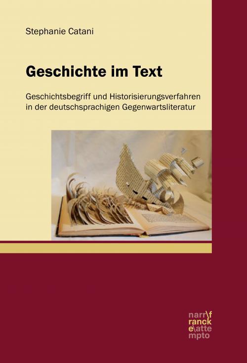 Geschichte im Text cover